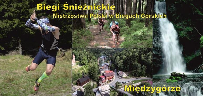baner Międzygórze (2).jpeg