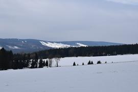 Galeria Trasy narciarstwa biegowego Lasówka