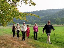 Nordic Walking w Górach Bystrzyckich